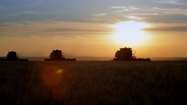 Case IH Tractor Spot, Directors Cut
