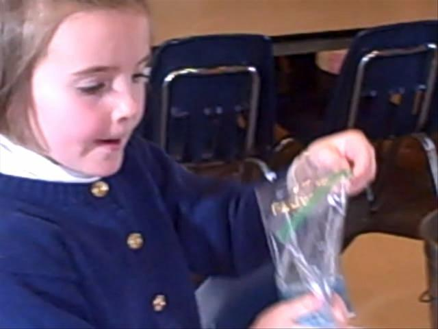 First Grade- Chemistry in a Baggie