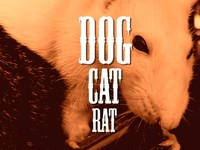 Dog Cat Rat