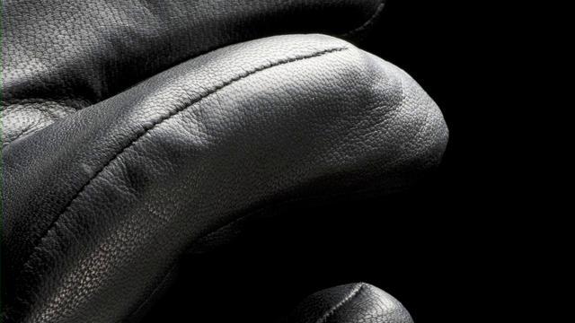 ARC'TERYX Fall 2010 The Alpha Project Glove