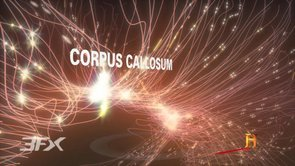 Corpus callosum cerebral hemisphere right brain left brain broadcast 3D medical animation motion graphics IBM