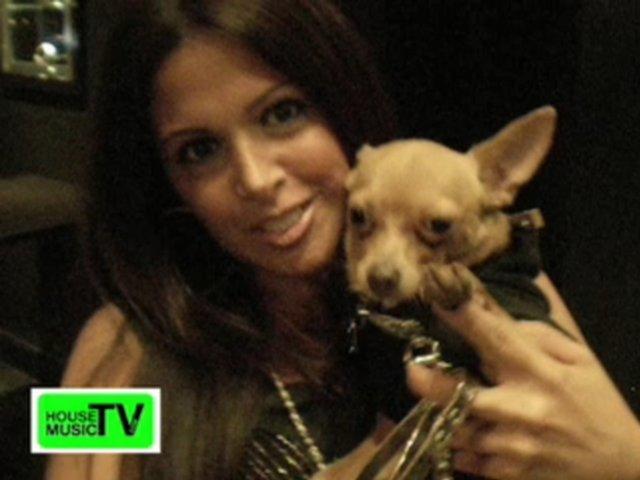 SEX & Doggy Fashion Show - Miami Beach - LEE KALT - House Music TV
