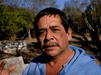 EL CACHO Mexican Emperor