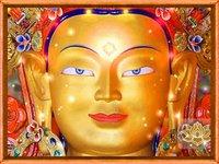 BUDDHA PREMA