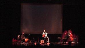 Steve Wariner performing