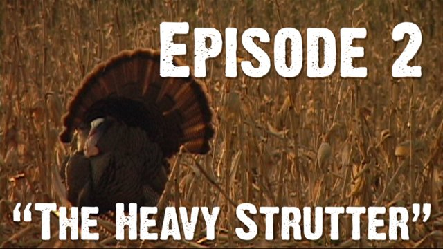 "Episode 2 - ""The Heavy Strutter"""