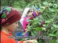 Munca copiilor în Republica Moldova