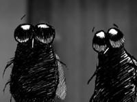 Zwiastun: Film, że mucha nie siada