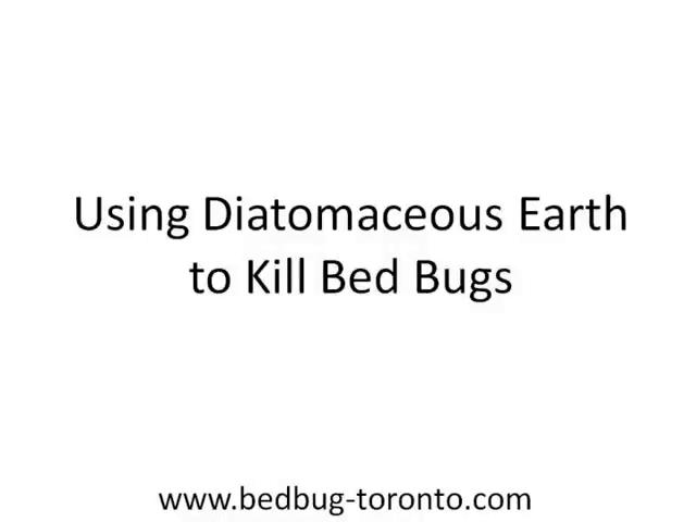 Using Diatomaceous Earth to Kill With Bed Bugs