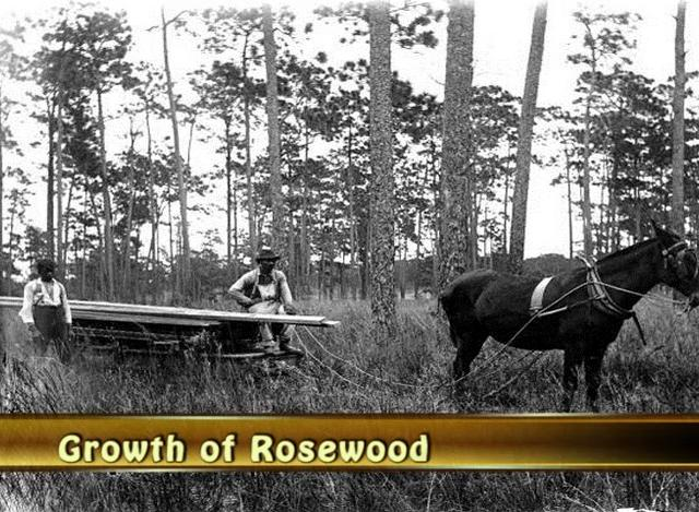 Storytelling >> Remembering Rosewood - Digital Storytelling Video on Vimeo