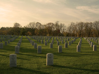 Imagem - Dia de Finados: Como lidar com a perda de um amigo(a) ou ente querido.